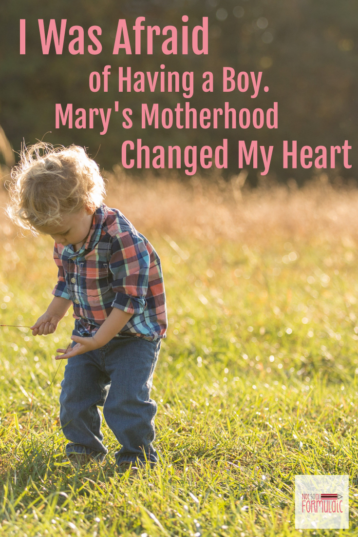 Afraid Of Having A Boy Pin - I Was Afraid Of Having A Boy. Mary's Motherhood Changed My Heart - Gifted/2e Parenting
