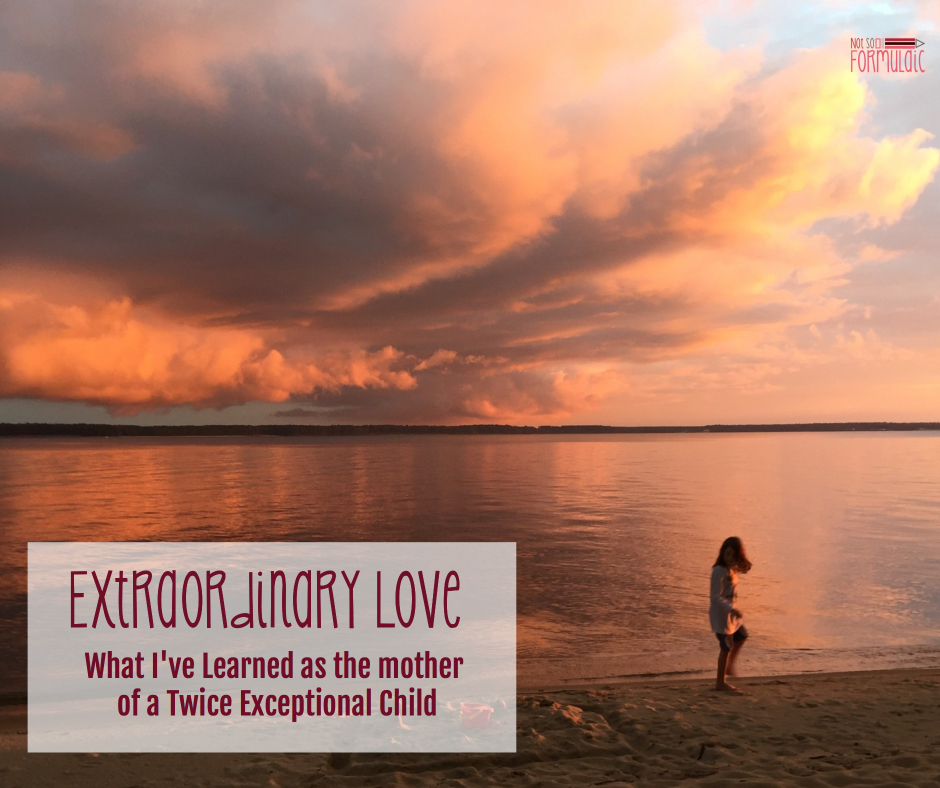 Extraordinary Love - Extraordinary Love: What I've Learned As The Mother Of A Twice Exceptional Child - Gifted/2e Parenting