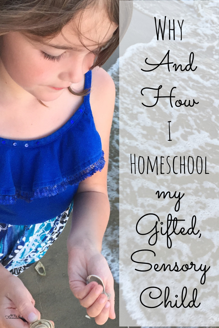 I Homeschool My Gifted Sensory Processing Disorder Child You Can Too Here 039 S Why And How - Why I Homeschool My Gifted, Sensory Processing Child, And How - Gifted/2e Education