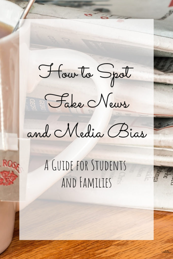 Fakenewspin - Fake News And Media Bias: A Guide For Parents And Kids - Gifted/2e Education