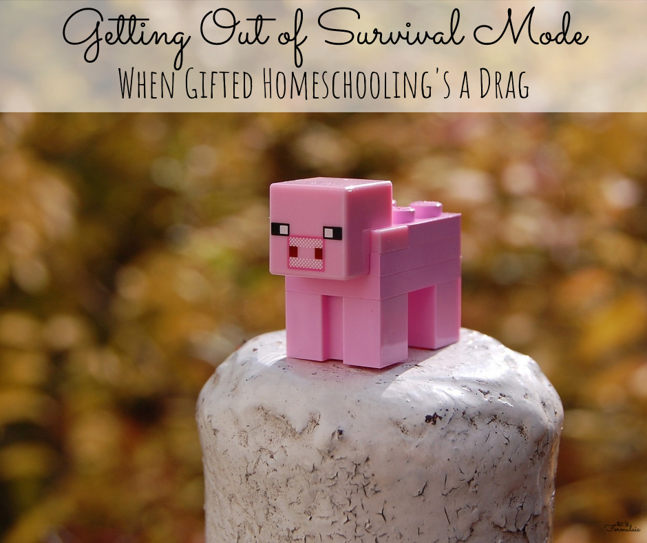 Minecraft - Getting Out Of Survival Mode: When Gifted Homeschooling Is A Drag - Gifted/2e Education