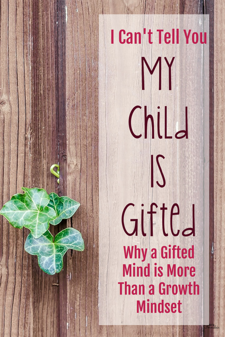 I can't tell you my child is gifted. Here's why, plus an explanation of how a gifted mind means more than having a growth mindset.