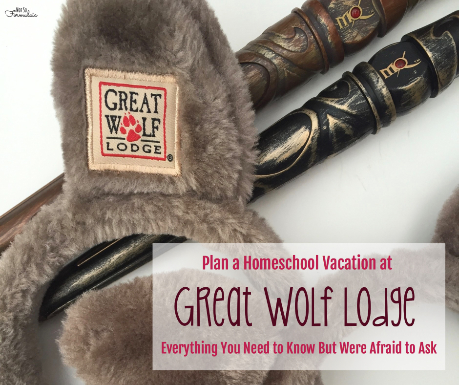 Greatwolflodge - Plan A Homeschool Vacation At Great Wolf Lodge - Gifted/2e Parenting