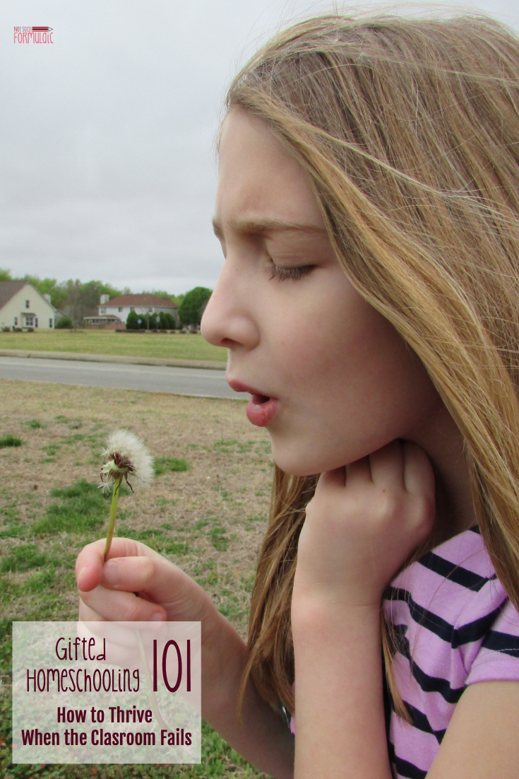 It is possible to homeschool your gifted child. Here's how to thrive when the classroom fails.