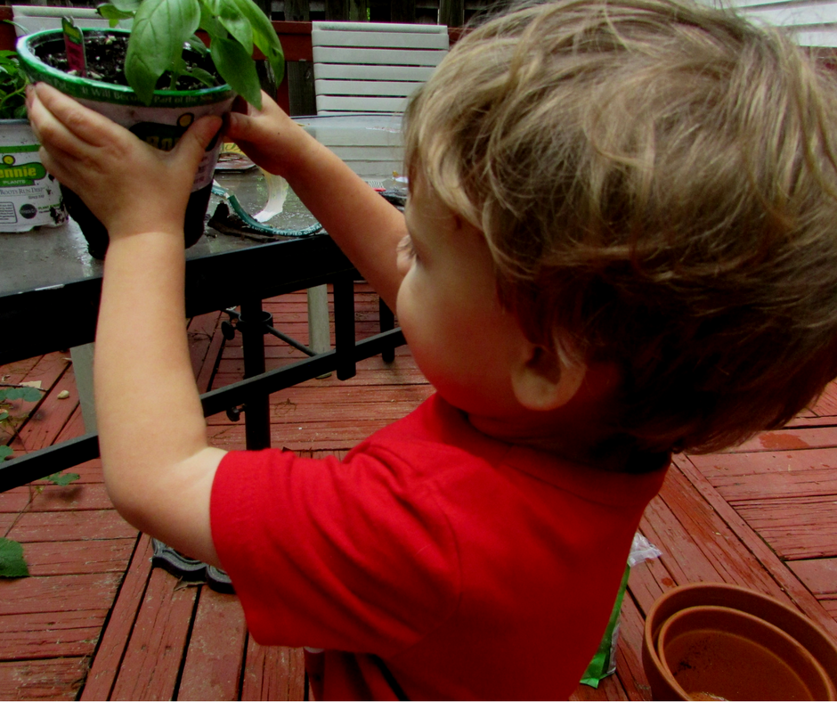 Holding - Screen-free Summer Life Skills Bingo: Grow Your Own Food - Gifted/2e Parenting