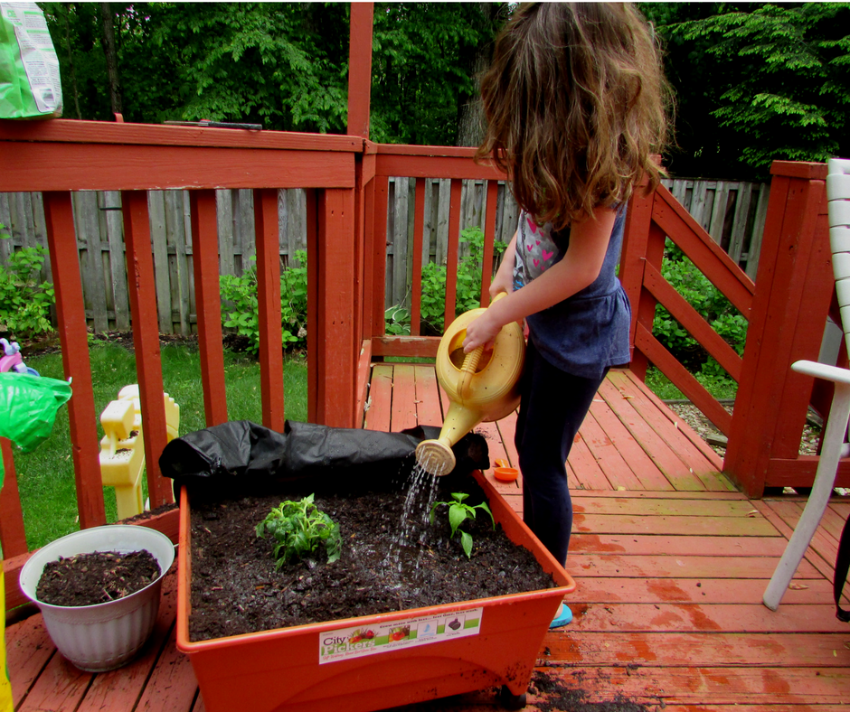 Watering - Screen-free Summer Life Skills Bingo: Grow Your Own Food - Gifted/2e Parenting