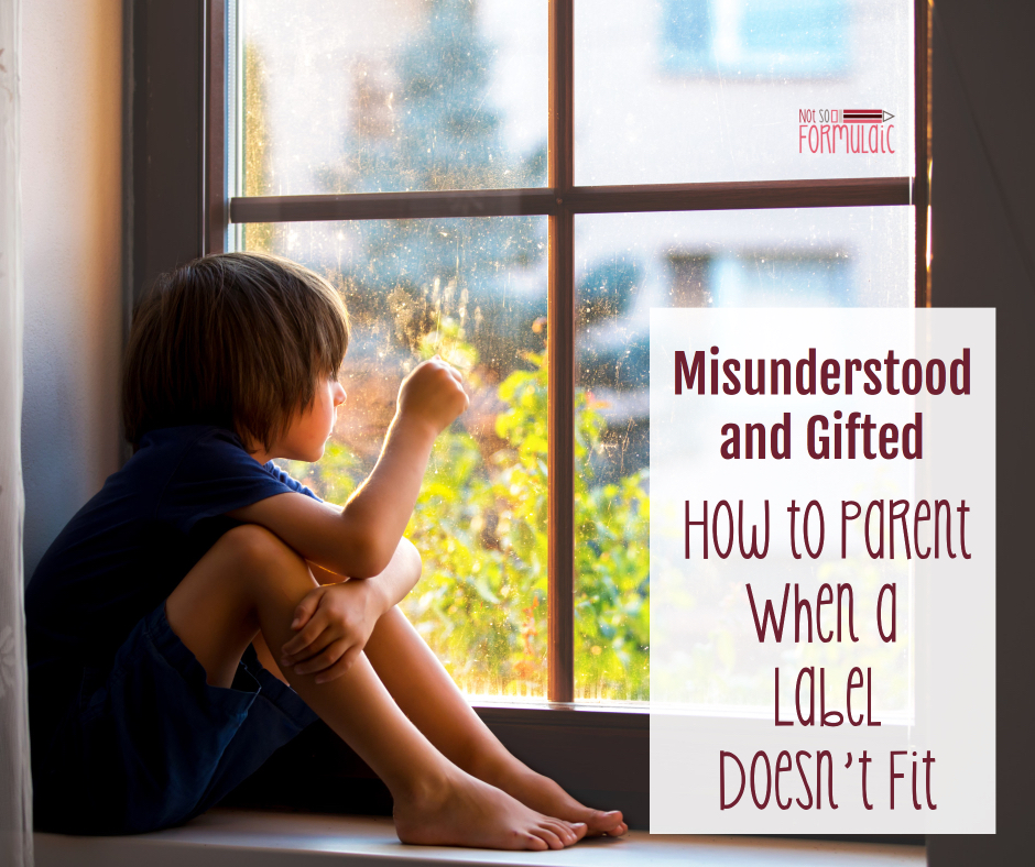 Misunderstood2 - Misunderstood And Gifted: How To Parent When A Label Doesn't Fit - Gifted/2e Parenting