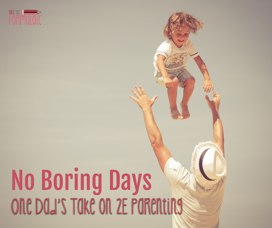 Dad 2e Parenting Fb - There Are No Boring Days: A Dad's Moving Take On Twice Exceptionality - Gifted/2e Parenting