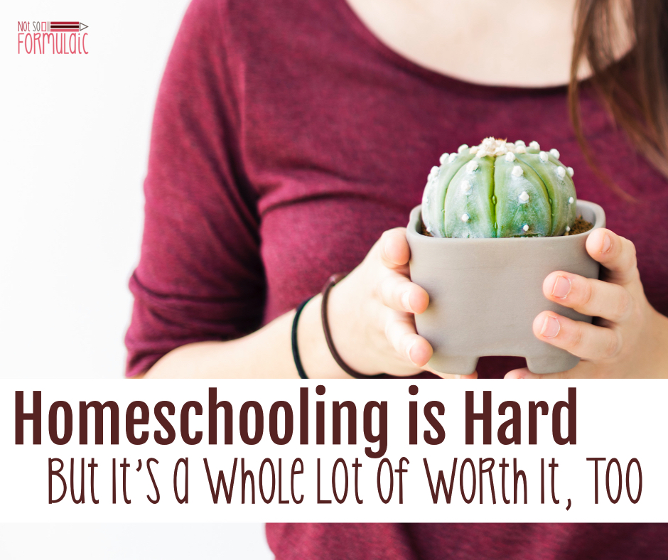 Homeschooling Is Hard Fb Photo - Homeschooling Is Hard, But It's A Whole Lot Of Worth It, Too - Gifted/2e Education