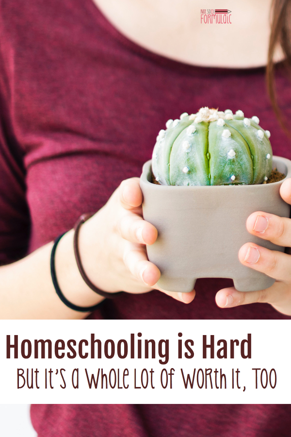Homeschooling Is Hard But Just Because Something Is Hard Doesn 039 T Mean It 039 S Not Absolutely Worth It Take An Honest Look At The Ups And Downs Of Homeschooling In This Honest And Encouraging Read Catholichomeschooling Christianhomeschooling Homeschoolencouragement Homeschooling - Homeschooling Is Hard, But It's A Whole Lot Of Worth It, Too - Gifted/2e Education