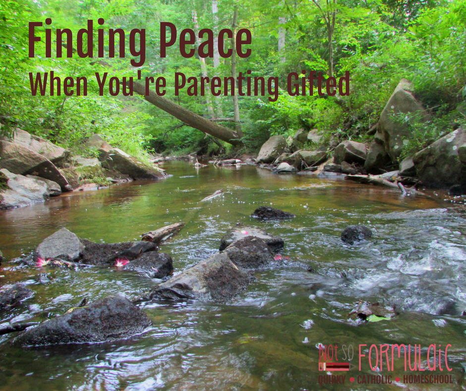 Parenting Gifted Fb - Parenting Gifted Kids Is An Emotional Rollercoaster. Here's How To Find Great Peace - Gifted/2e Parenting