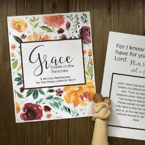 Grace Square - Grace Grows In The Trenches: 5 Minute Meditations For The Weary Catholic Mom
