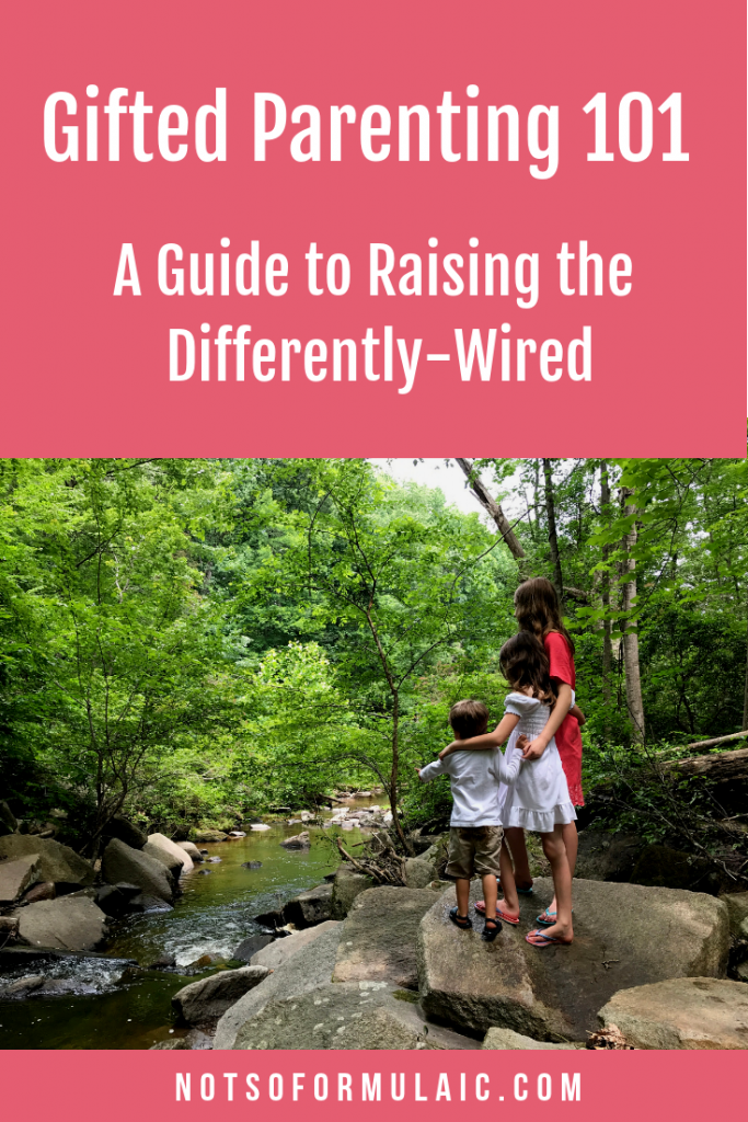 Gifted Parenting 101 A Not So Formulaic Guide To Raising The Differently Wired - Gifted/2e Parenting