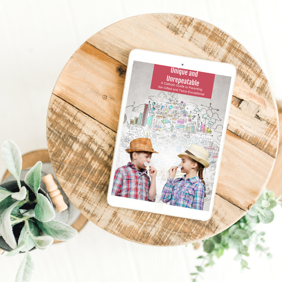 Copy Of Your Peaceful Home For The Holidays Promo Image - Unique And Unrepeatable: A Catholic Guide To Parenting The Gifted And Twice-exceptional