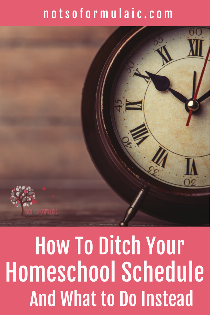 Truth About Homeschool Schedules 1 - Want The Truth About Homeschool Schedules? You Don't Need One - At All - Gifted/2e Education