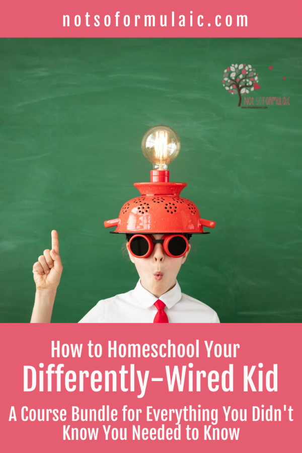 Homeschool Course Bundle - Homeschooling For Twice-exceptional Families (course Bundle)