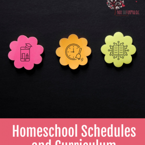 Homeschooling For Twice Exceptional Families Course Bundle