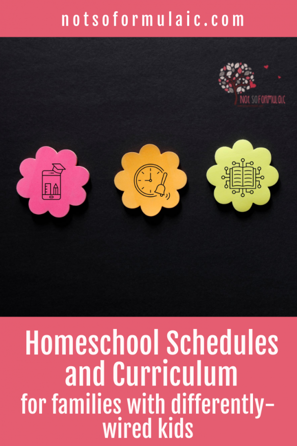 Homeschool Schedules And Curriculum For Twice Exceptional Families