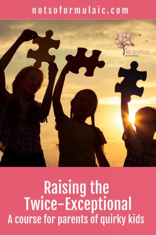 Raising The Twice Exceptional