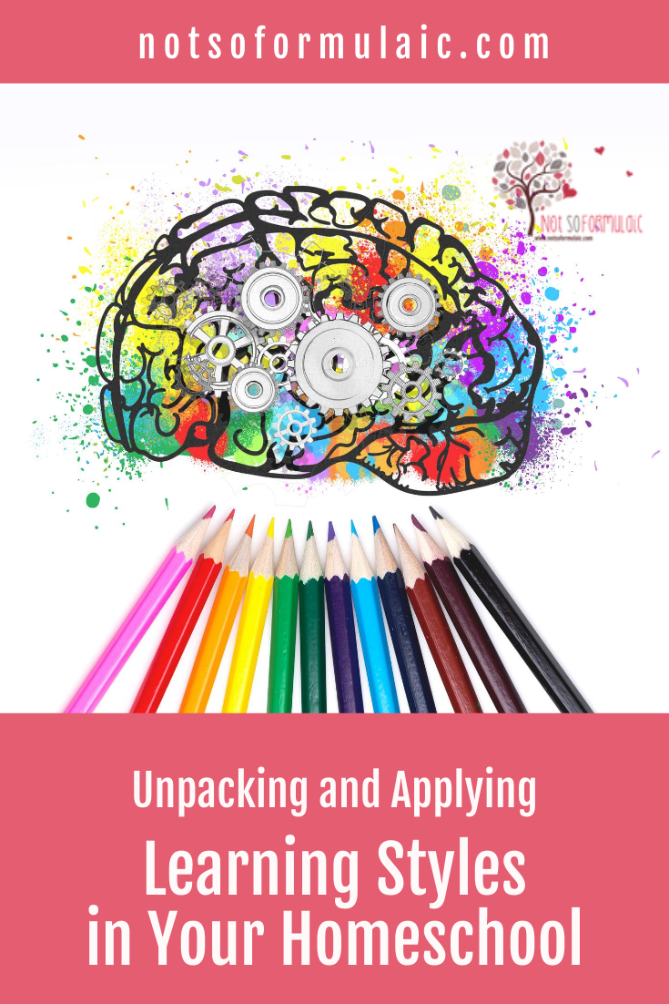 Unpacking And Applying Learning Styles Pin - Unpacking And Applying Learning Styles In Your Homeschool