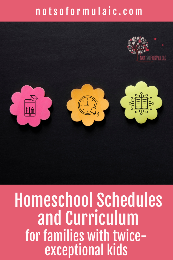 Revised Homeschool Schedules And Curriculum Pin - Course Bundle: Homeschooling Your Twice-exceptional Child