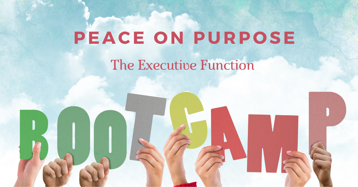 Peace On Purpose Bootcamp - Peace On Purpose: The Executive Function Skills Bootcamp