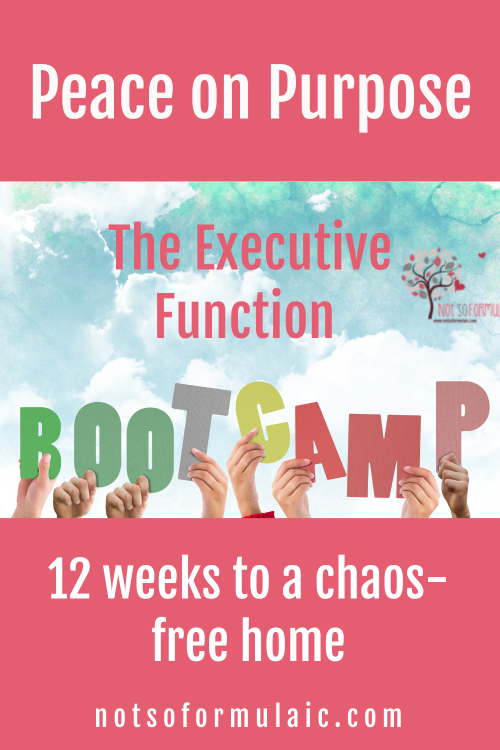 Peace On Purpose Pin - Peace On Purpose: The Executive Function Skills Bootcamp